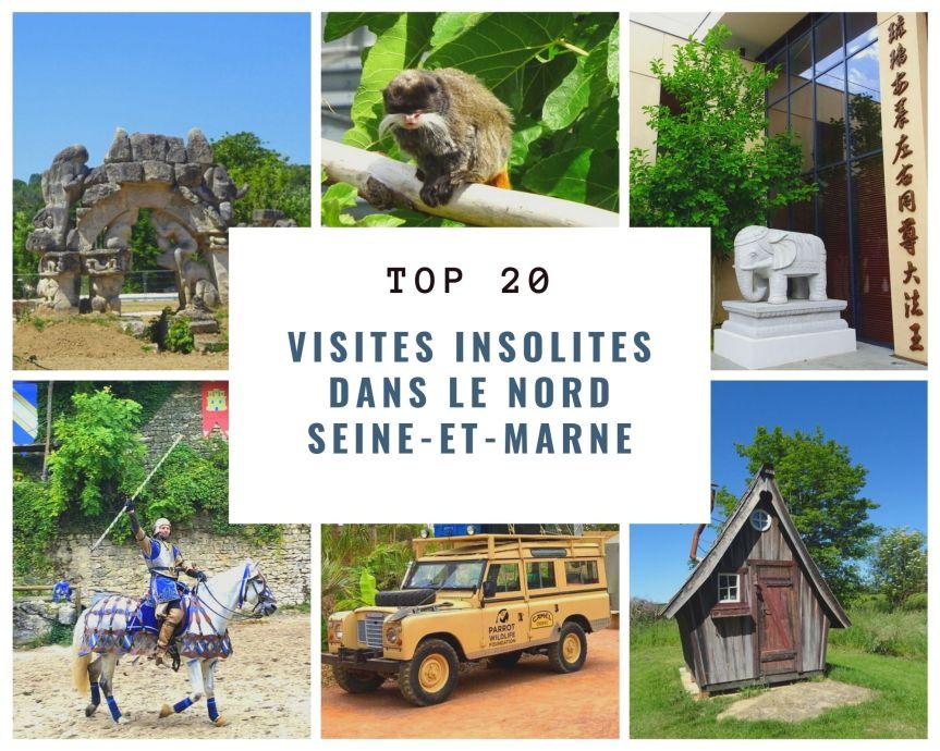 20 visites insolites à faire en famille en NordSeine-et-Marne